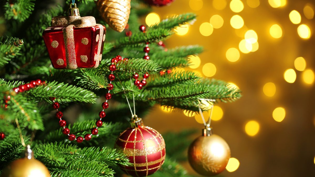 Decorated Christmas tree on  blurred, sparkling and fairy background; Shutterstock ID 228613051; PO: TODAY.COM